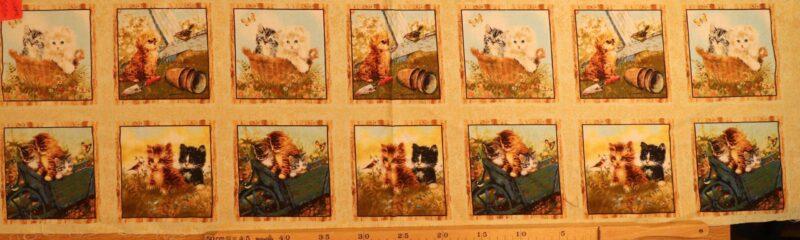 14 små billeder med kattekillinger - Patchwork rapport (48) -