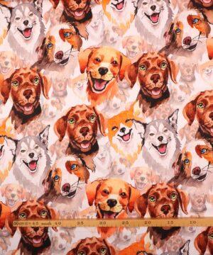 Hunde - Jersey -