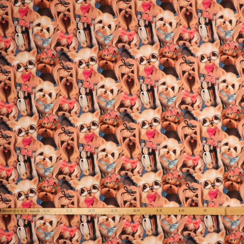 Hunde med briller - French Terry -