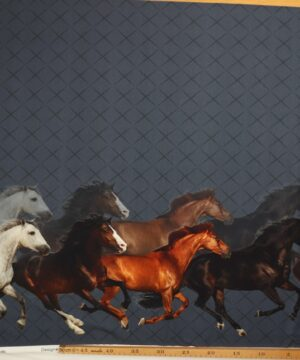 Heste - Jersey -