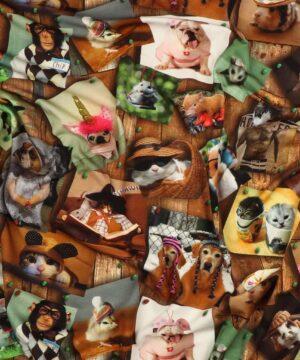 Dyrebilleder - Jersey -