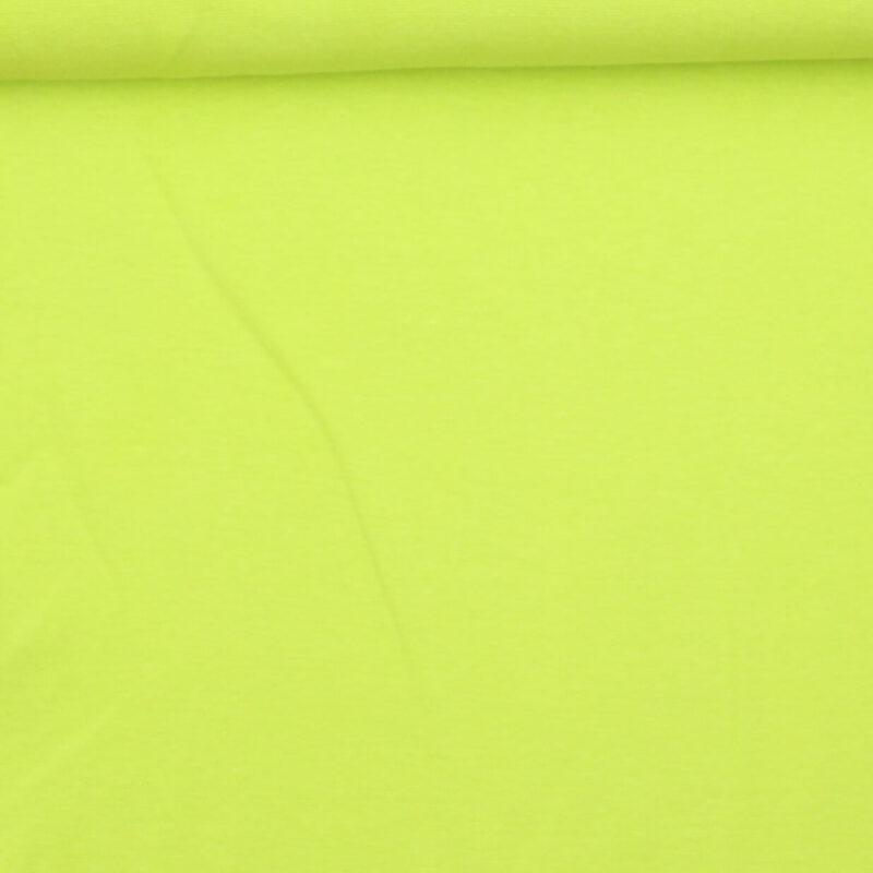 Kiwi - Rib -