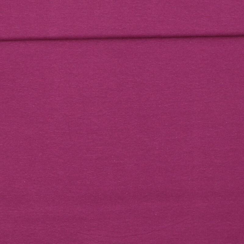 Lys violet - Rib -