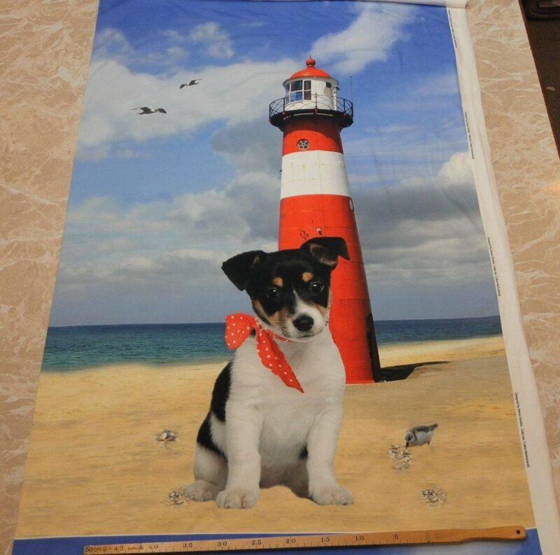 Hund ved fyrtårn, jersey rapport -
