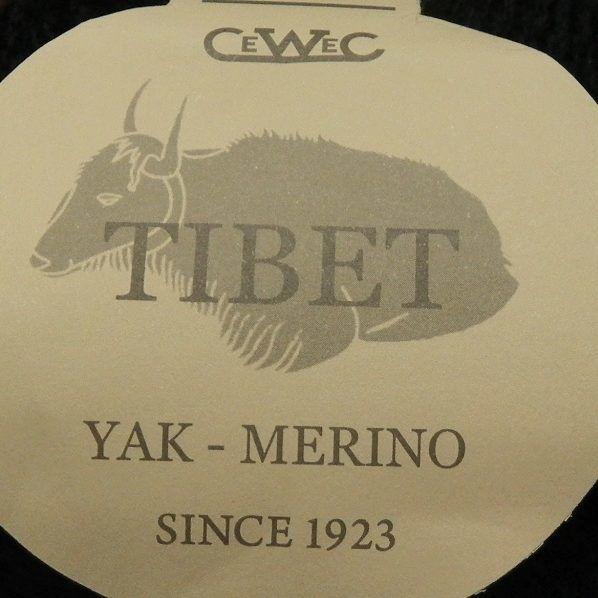 Tibet fra CeWeC -