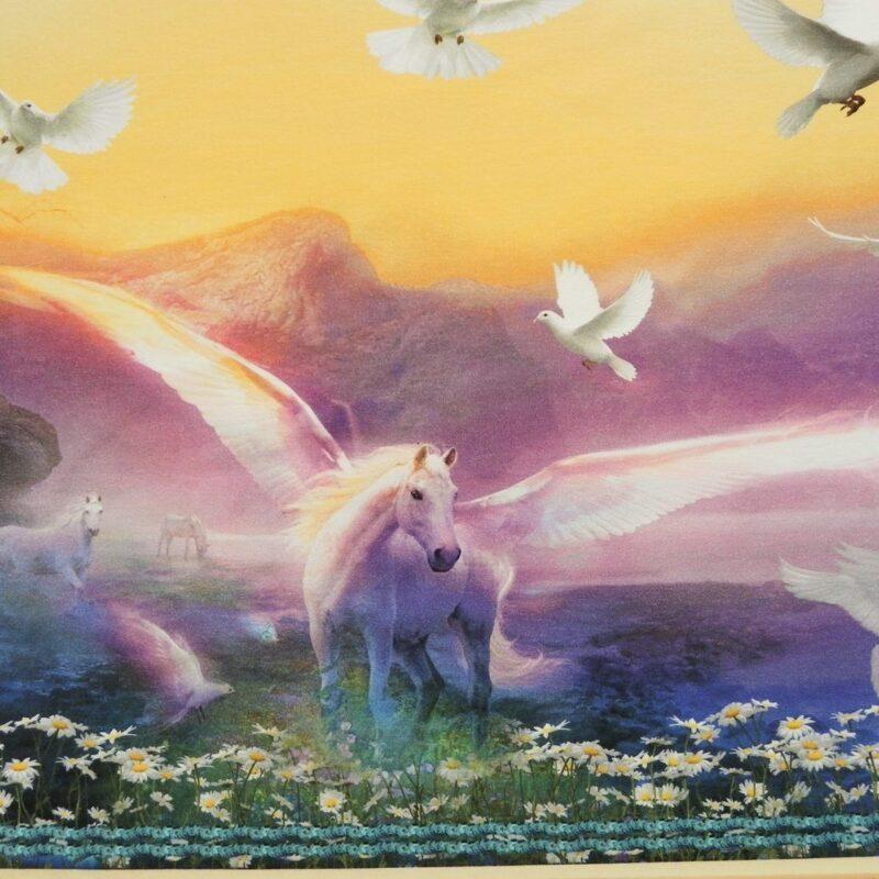 Pegasus, jersey rapport -