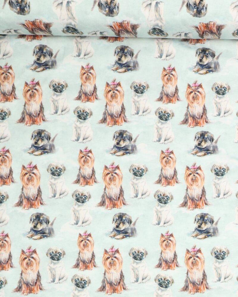 Små hunde - Jersey (GOTS certificeret) - Info mangler