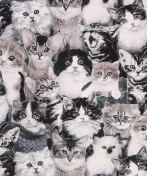 Kattekillinger - Patchwork -