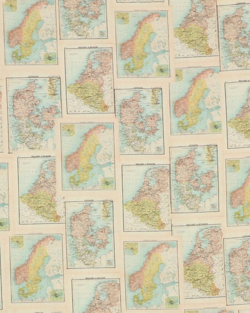 Old Schoole Map 2 - Patchwork -